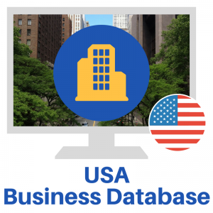 USA Business Database (2)
